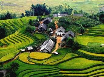 SP7 - Sapa Medium trek 3 days 2 nights by bus ( stay 1 night Hotel + 1 night homestay)